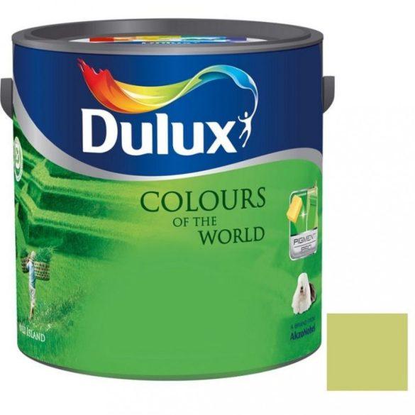 Dulux A Nagyvilág színei Rejtőző Leguán 2,5L