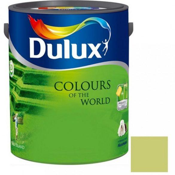 Dulux A Nagyvilág színei Rejtőző Leguán 5L